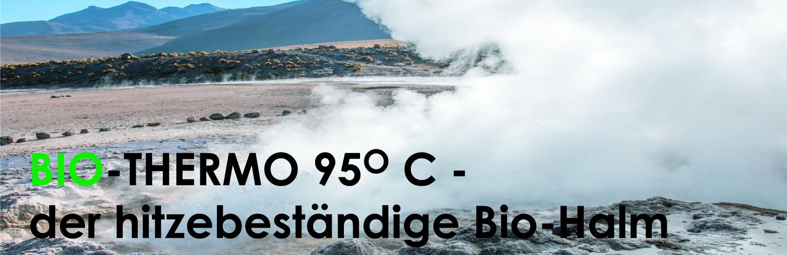 Bild-Bio-Thermo