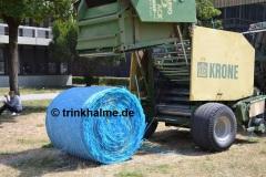 Ballenernte-Muenchen-MichaelBeutler-trinkhalme.de_6-1